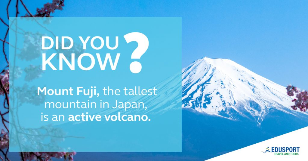 RWC2010 - Did you Know?