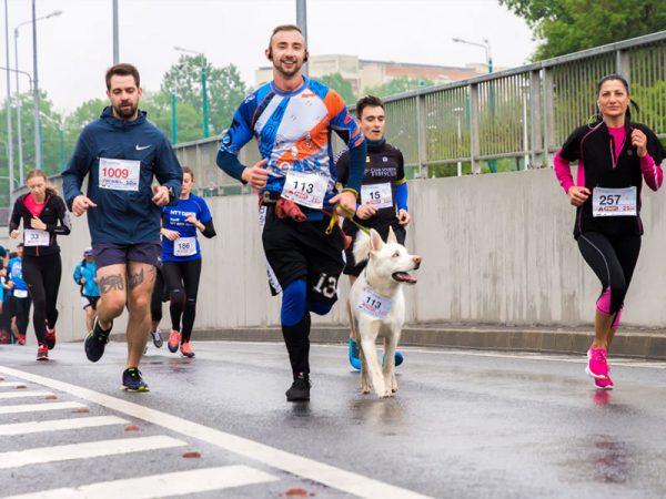 Marathon Running - Participation Sports