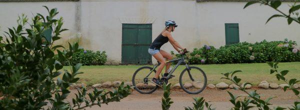 Stellenbosch Luxury Cycle & Tour