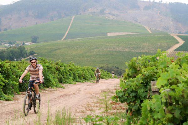 Bikes & Wine - Edusport Travel & Tours